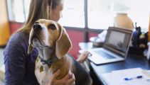Stacey Tremain: When pets become an unhealthy obsession