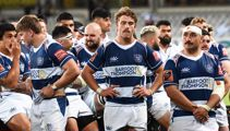 Auckland Rugby revolt: All Blacks threaten to quit, coach resigns after review