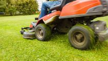 Ruud Kleinpaste: Autumn's the time to look at your lawn