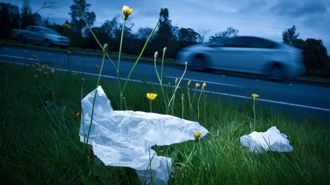 Cleaning illegally dumped rubbish is costing Auckland ratepayers a pretty penny