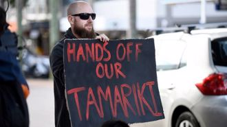 Andrew Dickens: Are Māori breaking the Treaty?