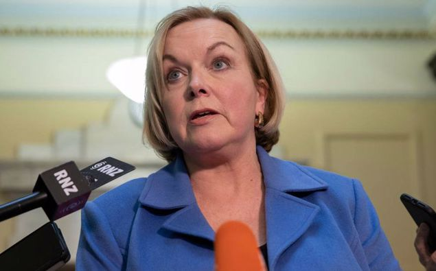 National Party leader Judith Collins. (Photo / NZ Herald)