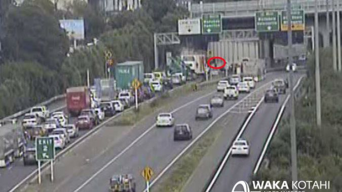 Emergency services rushed to Grafton Bridge on the outskirts of the Auckland CBD after a person fell off the bridge. (Image / NZTA)