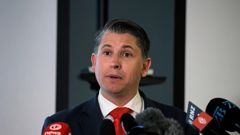 Workplace Relations Minister Michael Wood announced Cabinet's decisions on fair pay agreements, saying legislation could be passed next year. (Photo / Alex Burton)