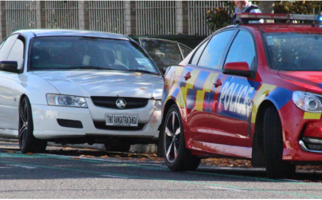 Driver with 'Tino Rangatiratanga' number plate arrested in Hastings
