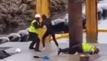 Waiheke Island marina: Video appears to show protester kicked in face