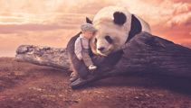 PHOTOS: 10-month-old photoshopped into remarkable animal encounters
