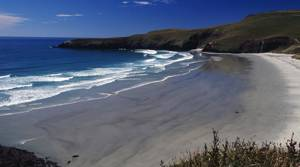 PHOTOS: Reasons why everyone loves New Zealand
