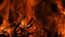 Fire restrictions in Horowhenua