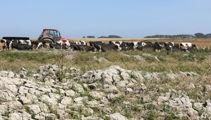 Canterbury farmers feeling the pinch