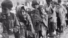 Turkey outraged after Brazil recognises Armenian genocide