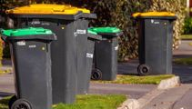 Backyard dumping could escalate under user-pays rubbish plan - tenants group