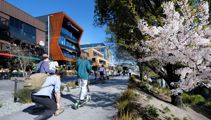 Mike Yardley: Blooming in Christchurch