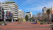 Waikato Mayor: Level 3 'serious carnage' for small businesses