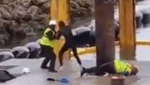 Developer: Waiheke Island face-kicking video 'not accurate representation'