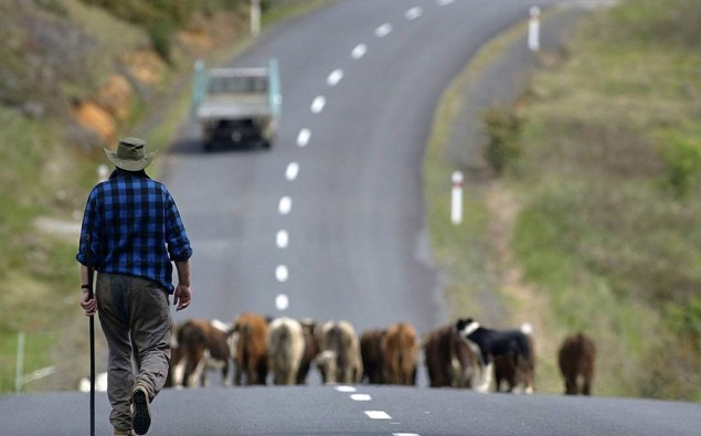 Howl of a protest: Thousands of farmers preparing to march across NZ tomorrow