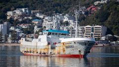 The Viking Bay fishing vessel, which is carrying two mariners infected with Covid-19, arriving in Wellington Harbour. Photo / Mark Mitchell