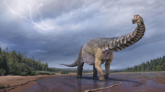 An artist's impression of Australotitan cooperensis, the largest known dinosaur discovered in Australia. (Photo / Eromanga Natural History Museum via CNN)