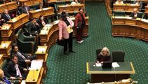 Māori Party walks out of House denouncing 'racist questions'