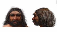 This illustration shows what Homo longi 'dragon man' may have looked like. (Photo / CNN)