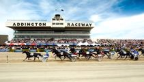 What impact will Level 2 have on New Zealand Cup Week?