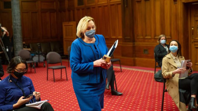 National leader Judith Collins arriving for her standup at Parliament. (Photo / Mark Mitchell)