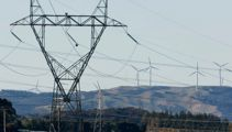 Transpower focus of urgent probe into blackout