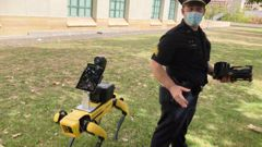 Police officials experimenting with the four-legged machines say they're just another tool, like drones or simpler wheeled robots. (Photo / AP)