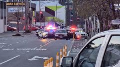 Last night police stopped a vehicle on Victoria St in Wellington's CBD in relation to the firearms incident. (Photo / Ryan Holloway)