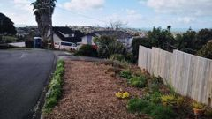 A local resident objected to the planted berm. Photo / Louise Burnie
