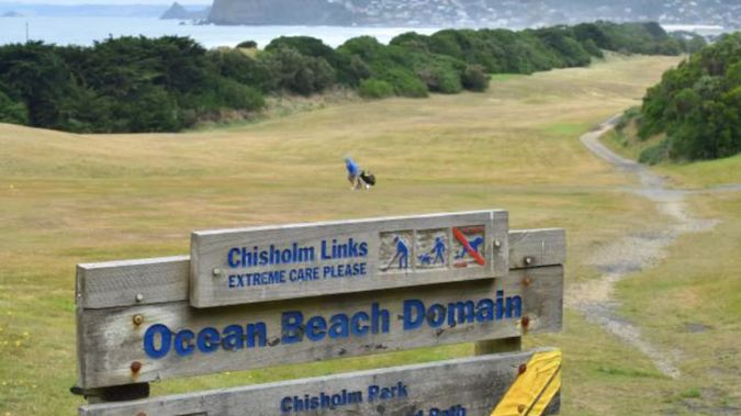 Looking south at Chisholm Links, Dunedin. (Photo / Gregor Richardson)
